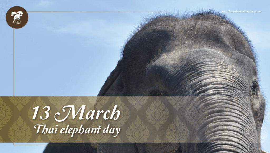 Thai Elephant Day